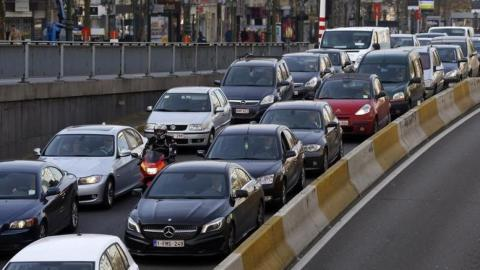 Hungry mice thwart fix for Brussels' traffic chaos