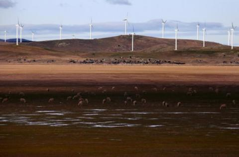 China state firms seen boosting green energy investment in Australia