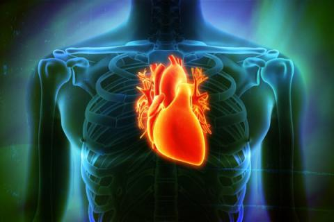 Protect your heart from Hepatitis C