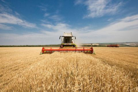 Ukrainian PM: farmland turnover law adoption is one of govt's key tasks in 2016