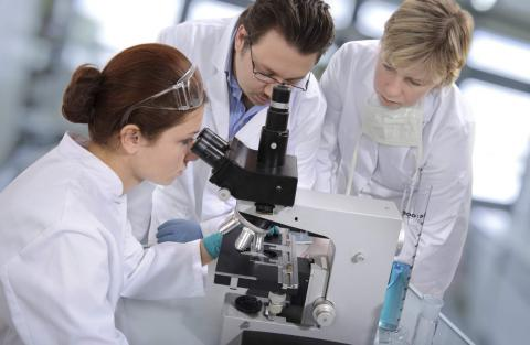 Young Ukrainian scientists got their projects sponsored by govt