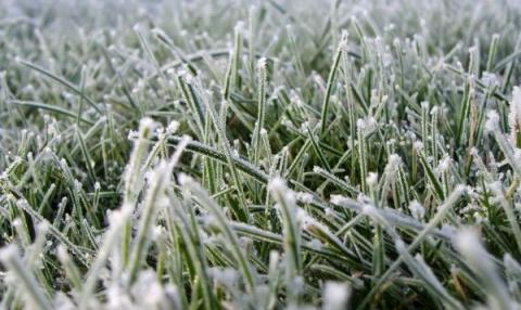 Early frosts expected in Ukraine on September 21-23