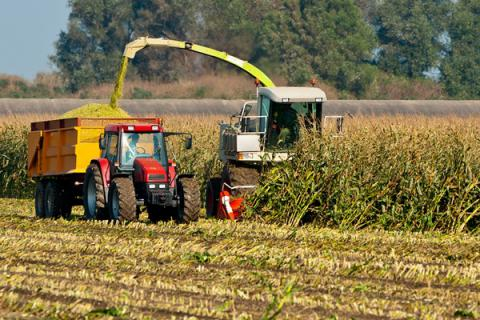 Ukraine increased its agricultural export