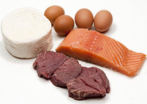 High-protein diet curbs metabolic benefits of weight loss