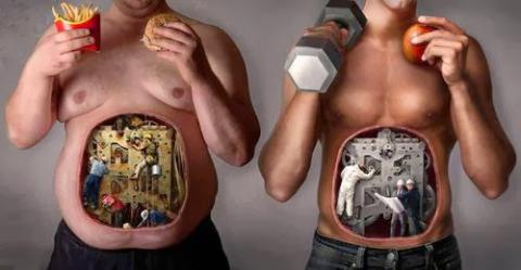Metabolism: What is it and can it be controlled?