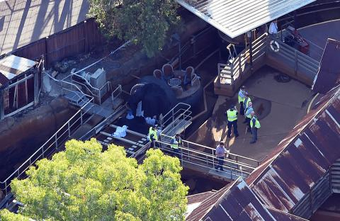 Ride that killed 4 at Australia's Dreamworld will be demolished - owner