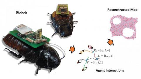 Tech would use drones and insect biobots to map disaster areas