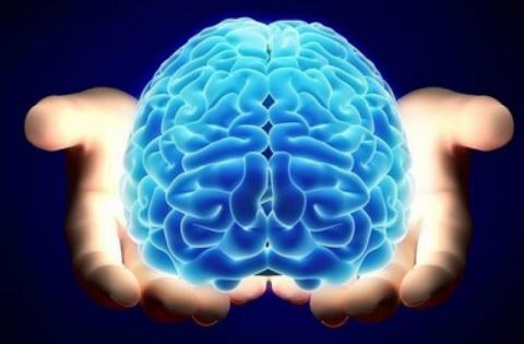Super-sized memory is trainable and long lasting