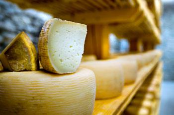 Australia, New Zealand back U.S. on possible WTO action on Canada dairy