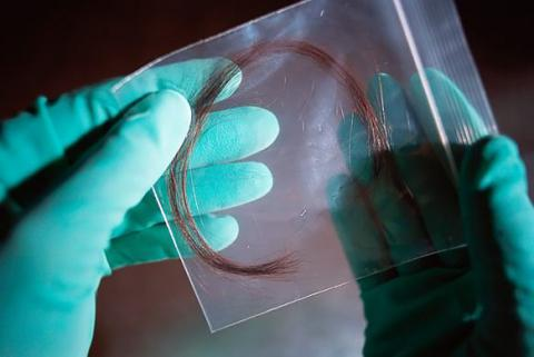 Hair strands could reveal lifestyle secrets of criminals