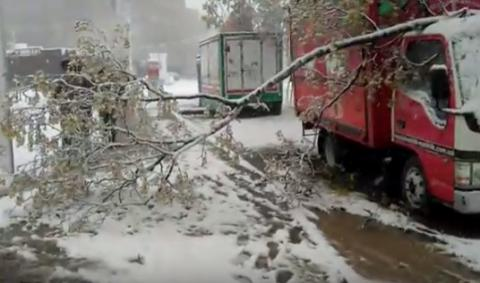 Winds, snowstorms left 152 towns, villages in Ukraine without electricity (VIDEO)