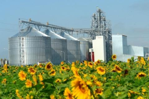 Largest Ukrainian agricultural holding halves net loss in 2016 - Report