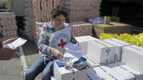 Red Cross delivers 330 tonnes of humanitarian aid to Donetsk in Russia-occupied Donbas