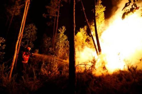61 killed in huge forest fires in central Portugal (VIDEO)