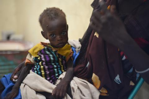 Doctors warn of outbreak of cholera in South Sudan that could kill thousands