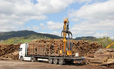 Ukrainian Parliament supports ban on timber harvesting in Carpathians