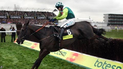 Gold Cup winner Denman put to sleep aged 18