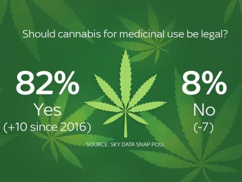 Most Britons want medicinal cannabis legalised: Poll