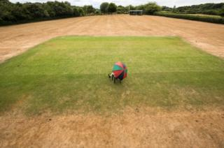 The dried parks and parched lawns of Britain