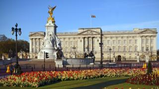 Buckingham Palace: Man released over
