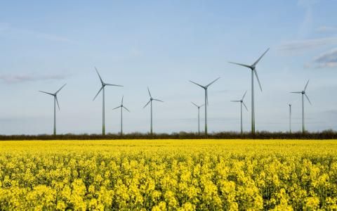 Is onshore wind back on? Fresh support could set new turbines spinning