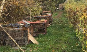 Training hunting center with wild animals found near Lviv
