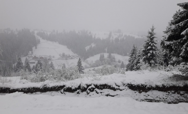 Ukrainian Carpathians covered with snow (photo, video)
