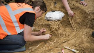 Battle of Waterloo: Excavation unearths amputated limbs