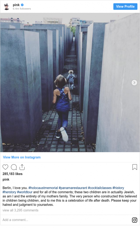 Pink defends Holocaust memorial photo after criticism