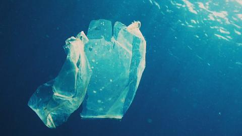 Plastic pollution: Calls to do more to cut bag use
