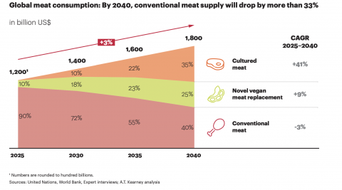 What's beyond Beyond Meat and Impossible Foods in the future of food?