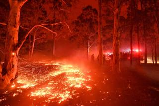 Latest photos of the devastating Australian bushfires