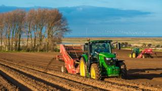 Agriculture Bill: Soil at heart of UK farm grant revolution