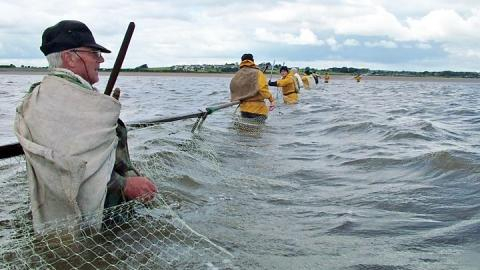 The Solway Firth haaf netters fighting to save a fishing tradition