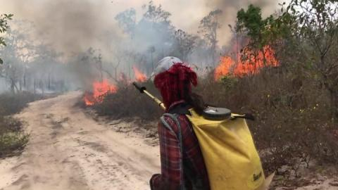 Brazil: Amazon land defender Zezico Guajajara shot dead